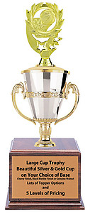 Gender Neutral Basketball Tournament Trophies Great Awards for Basketball Tournaments as Low as $41.99