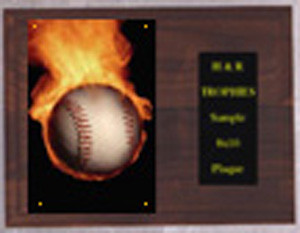 Solid Walnut Image Baseball Plaque H Series