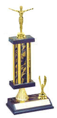 Gymnastics Trophies S2R Style, 5 Levels of Pricing, As Low as $7.99