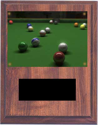 Cherry Finish Image Pool Plaques V Series