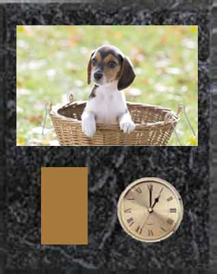 Beagle Field Trial Plaque Clock V Series