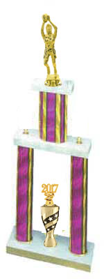 Big DPS Girls Basketball Trophies, Your Best Price $23.49