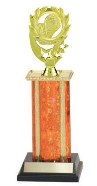 Gender Neutral Basketball Trophies, 8 to 18