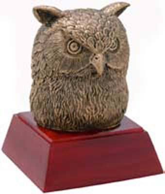Promote Owl Mascot and Owl Bobble Head