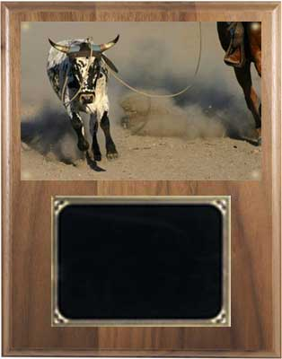 Deluxe Horse Show Plaques and Rodeo Plaques on Solid Walnut