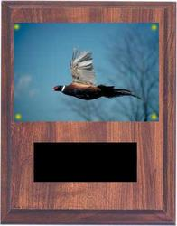 Pointer and Retiever Field Trial Plaques V Series