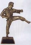 Resin Men's Martial Arts Trophy Statue