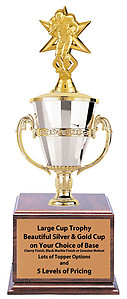 Large Cup Football Trophy