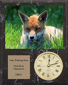 V Series Black Marble Finish Fox & Coyote Plaques with Clocks