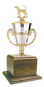 SGGW Foxhound Field Trial Cup Trophies with Three Size Options