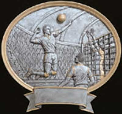Resin Men's Volleyball Plaque Trophy Award