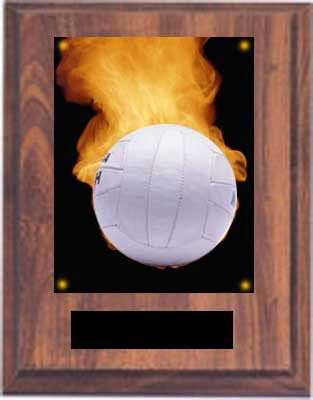 Picture Volleyball Plaque N Style