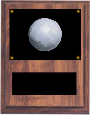 Image Volleyball Plaque V Style