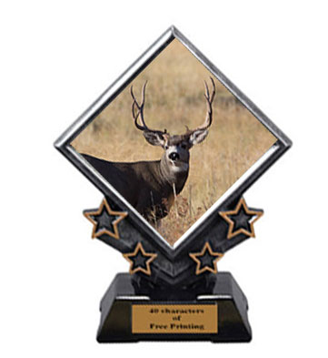 Archery Diamond Star Trophies have 3 Size Options