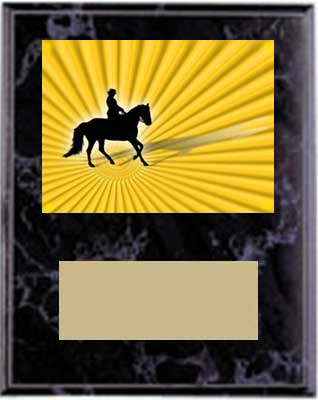 Equestrian plaques sizes 5