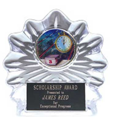 Swimming Flame Ice Award