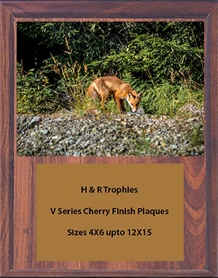 V Series Cherry Finish Fox & Coyote Plaques