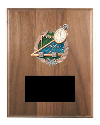 Solid Walnut Swim Plaque Award