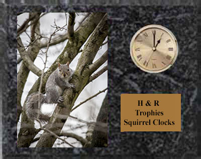 Squirrel Plaque with Clock H Series