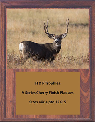 V Series Cherry Finish Archery Plaque