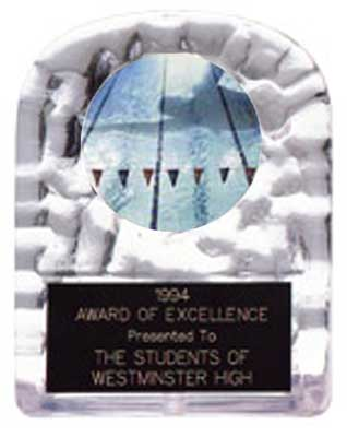 Block Swimming Ice Award
