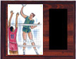 Image Volleyball Plaque H Style