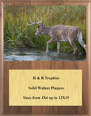 V Series Solid Walnut Image Archery Plaque