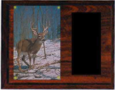 Image Archery Plaque H Series