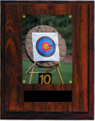 Image Target Archery Plaques N Series