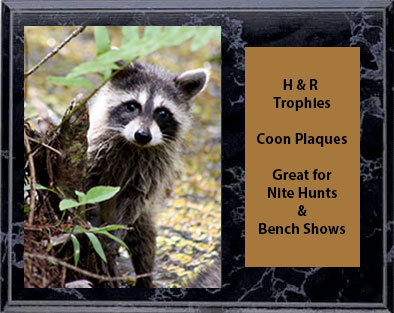 Coon Hunt and Bench Show Plaques