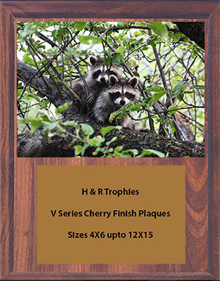 V Series Cherry Finish Nite Hunt Plaque