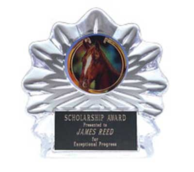 Acrylic Flame Ice Equestrian Trophies