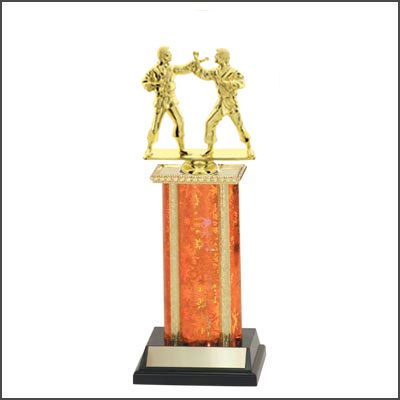 Martial Arts Trophies 8