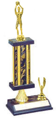 Men and Boys Basketball Trophies as Low as $7.49