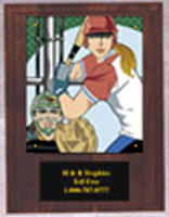 Solid Walnut Softball Plaque N Series