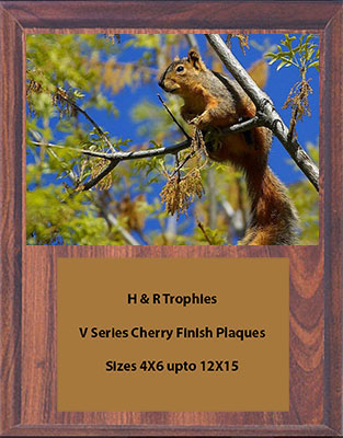 Squirrel Plaques in Your Choice of Cherry, or Black Marble Finish, and Solid Walnut