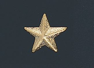Star Chenille Pin 161 Volleyball