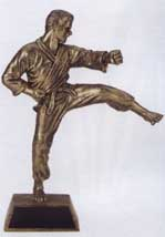 Male  Martial Arts Resin Trophy