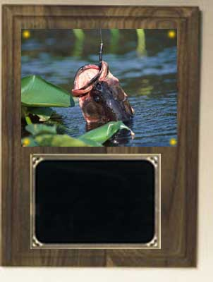 Deluxe Image Fishing Plaque in Solid Walnut V Series