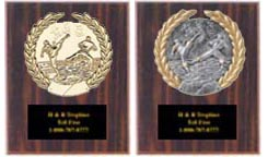 Cherry Finish Kickboxing Trophy Plaque Awards