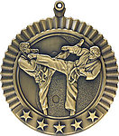 Male Martial Arts Medals 36623 with Neck Ribbons
