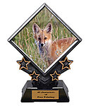 Diamond Star Fox and Coyote Trophies