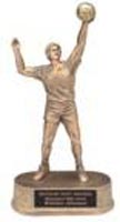 Resin Men Volleyball Trophy Statue 71G
