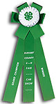 Rosette Ribbon Custom Printed TR70
