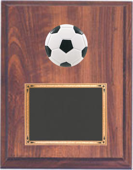 TRM7233 Soccer Plaque Deluxe