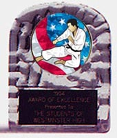 Acrylic Block Ice Martial Arts Trophy