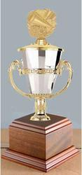 Cheerleader Cup Trophies