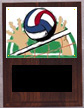 Solid Walnut Image Volleyball Plaque V Style
